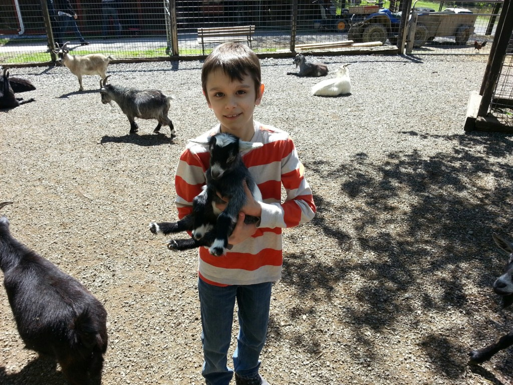 Noah and tiny goat